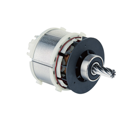 4820018 Brushless Motor for Power Tools