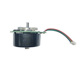 4219017 Brushless Motor of Outer Rotor